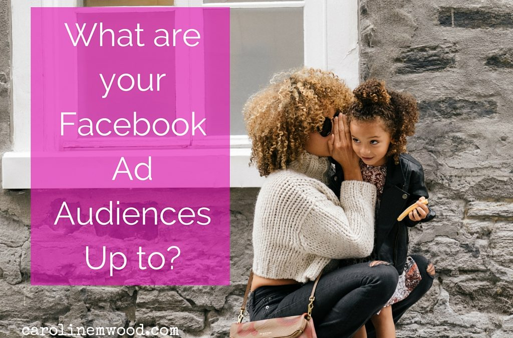 What are your Facebook audiences up to?
