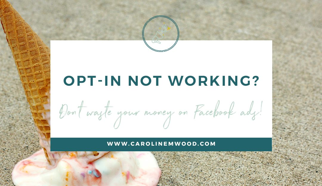 Don't waste money on Facebook ads with a dud opt-in!